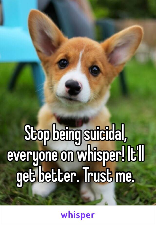 Stop being suicidal, everyone on whisper! It'll get better. Trust me.