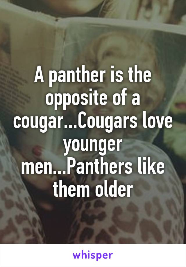 Whats the opposite of a cougar