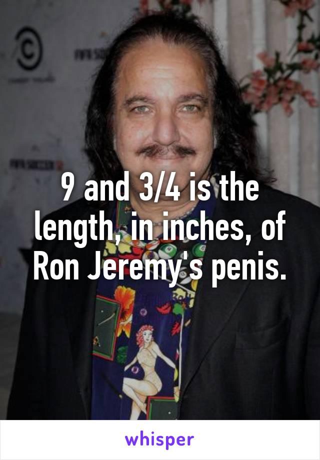 Ron jeremey penis