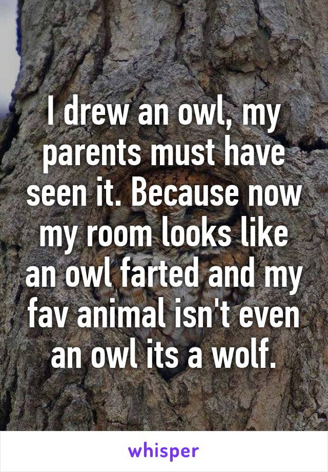 I drew an owl, my parents must have seen it. Because now my room looks like an owl farted and my fav animal isn't even an owl its a wolf.
