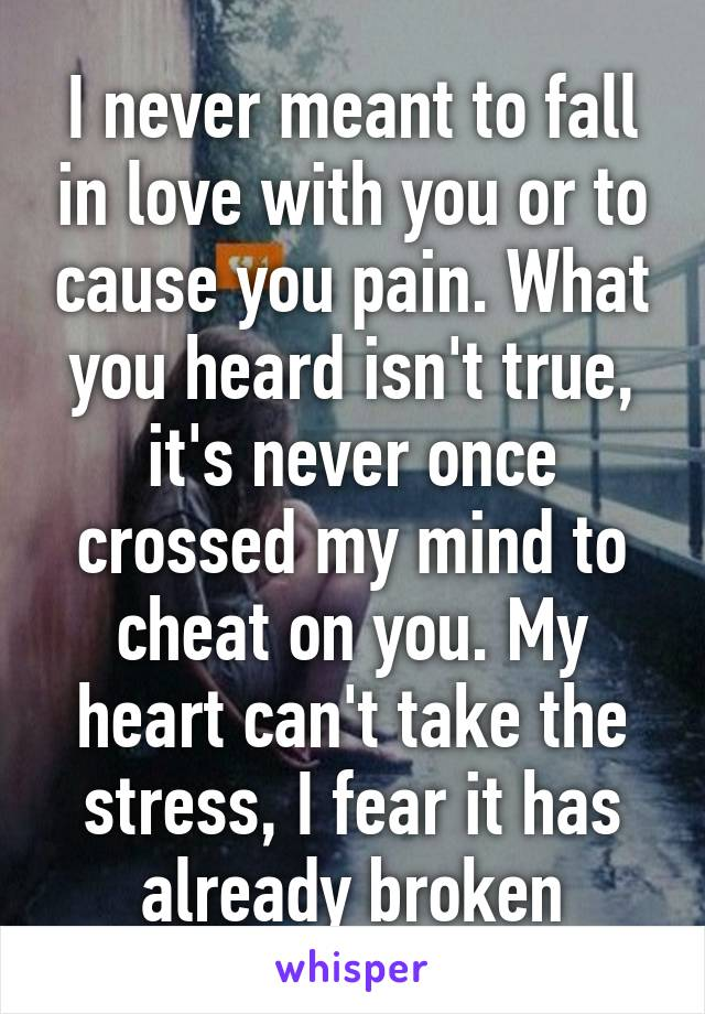 I never meant to fall in love with you or to cause you pain. What you heard isn't true, it's never once crossed my mind to cheat on you. My heart can't take the stress, I fear it has already broken