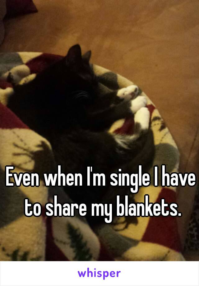 Even when I'm single I have to share my blankets.