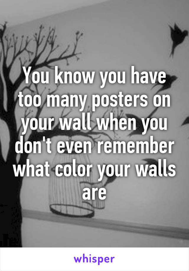 You know you have too many posters on your wall when you don't even remember what color your walls are