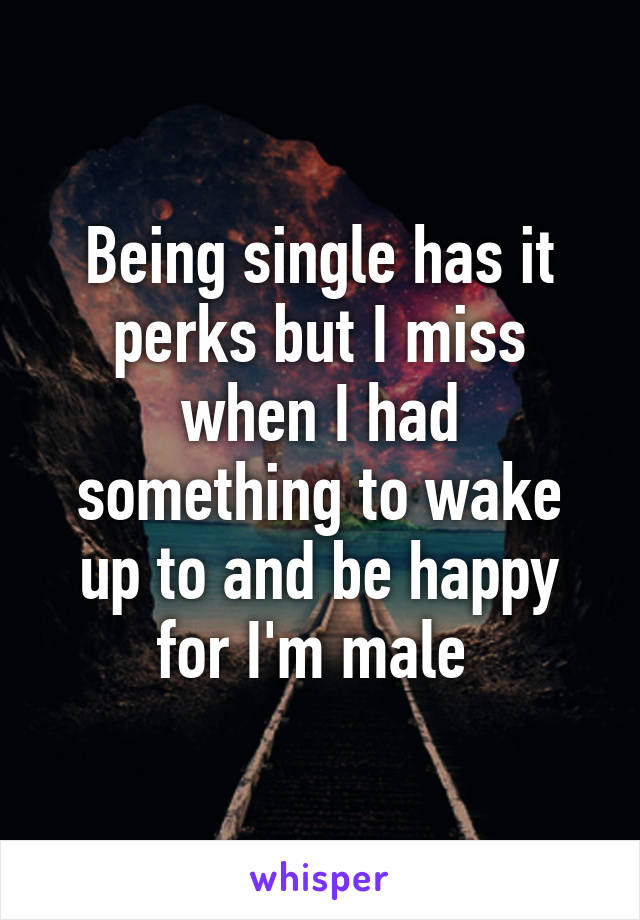 Being single has it perks but I miss when I had something to wake up to and be happy for I'm male