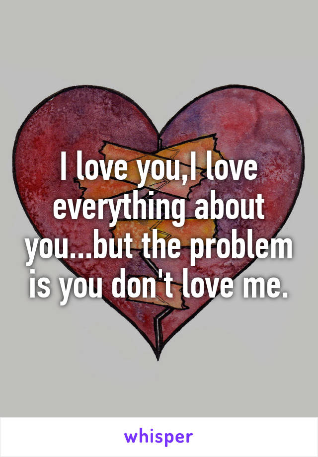 I love you,I love everything about you...but the problem is you don't love me.