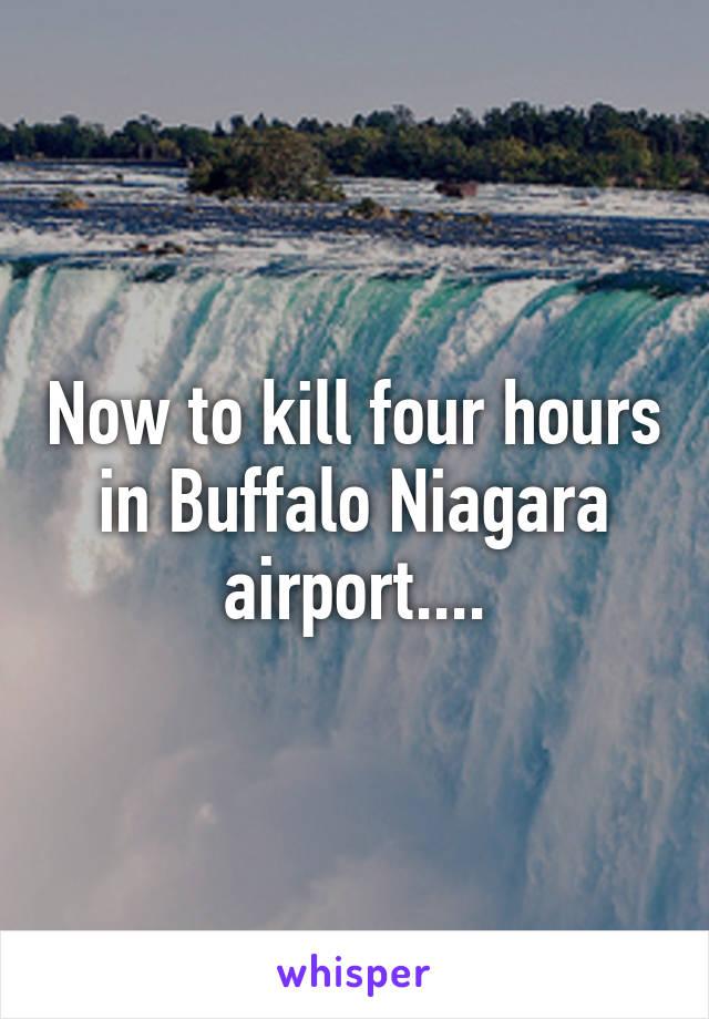 Now to kill four hours in Buffalo Niagara airport....