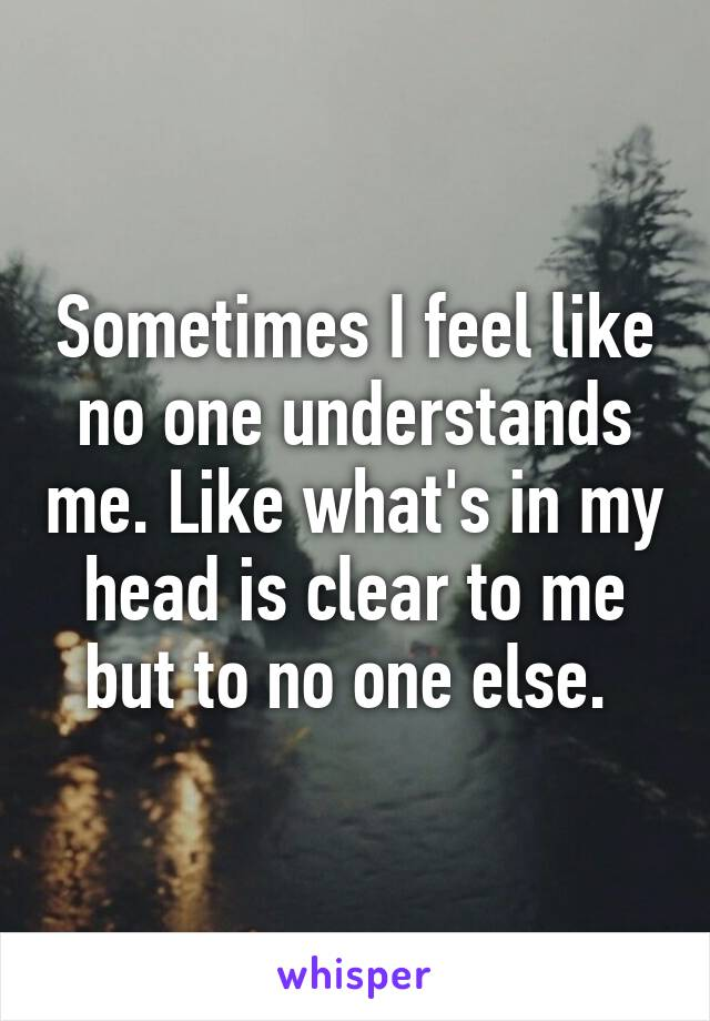 Sometimes I feel like no one understands me. Like what's in my head is clear to me but to no one else.