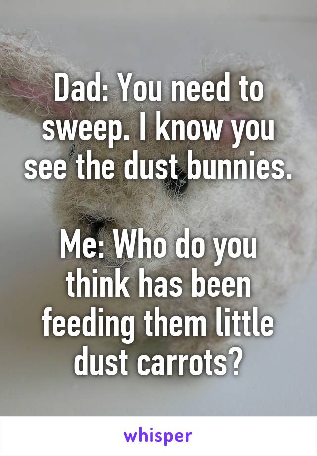 Dad: You need to sweep. I know you see the dust bunnies.  Me: Who do you think has been feeding them little dust carrots?