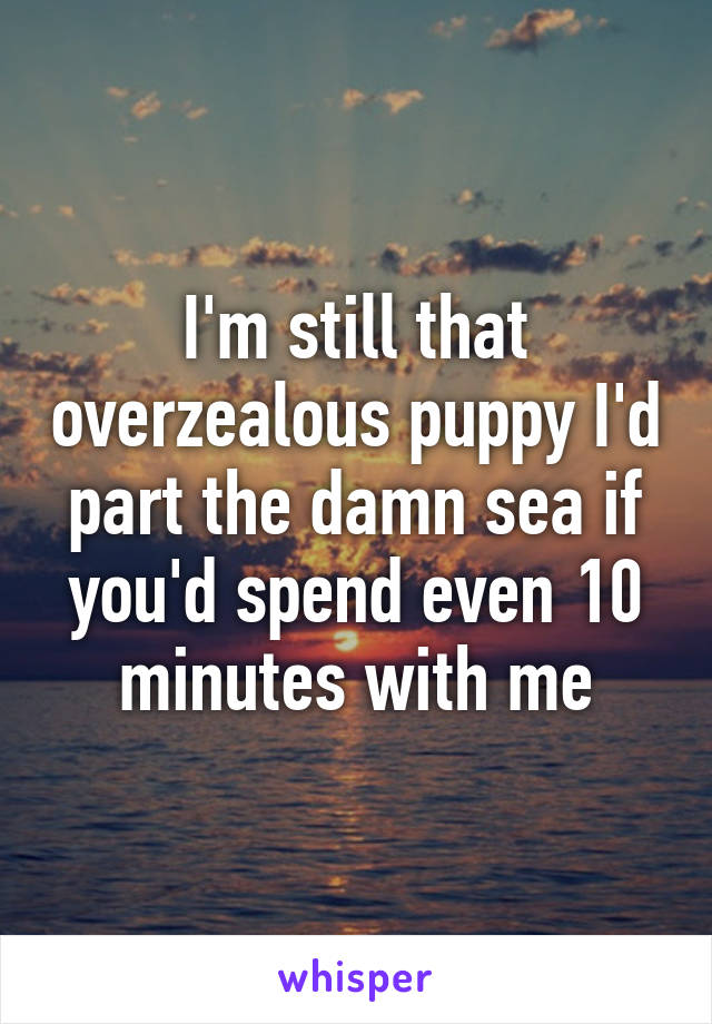 I'm still that overzealous puppy I'd part the damn sea if you'd spend even 10 minutes with me