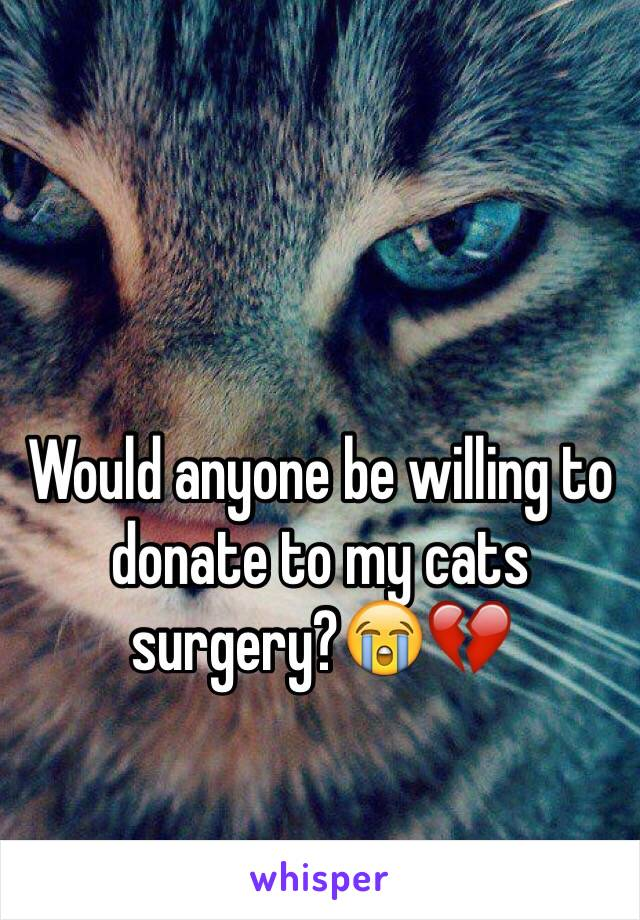Would anyone be willing to donate to my cats surgery?😭💔
