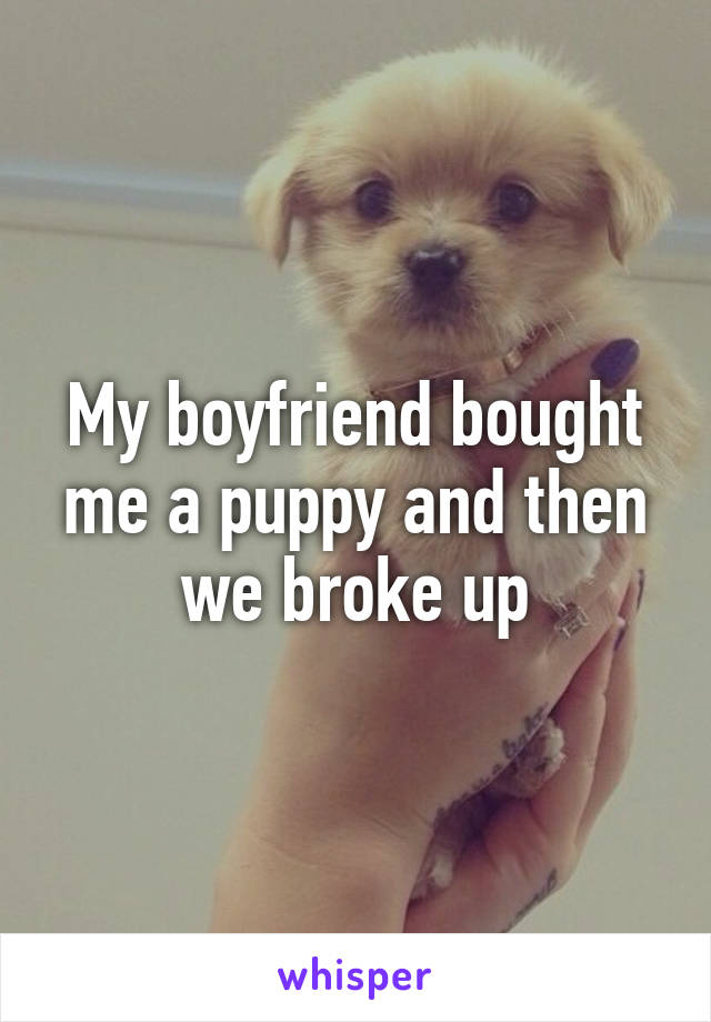 My boyfriend bought me a puppy and then we broke up