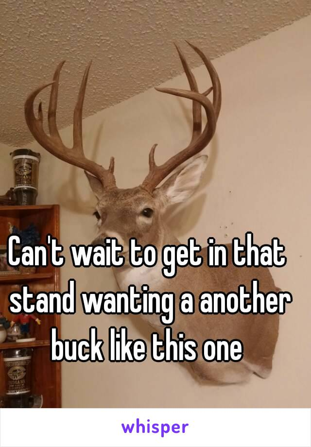Can't wait to get in that stand wanting a another buck like this one