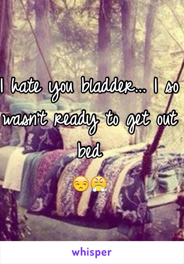 I hate you bladder... I so wasn't ready to get out bed 😒😤