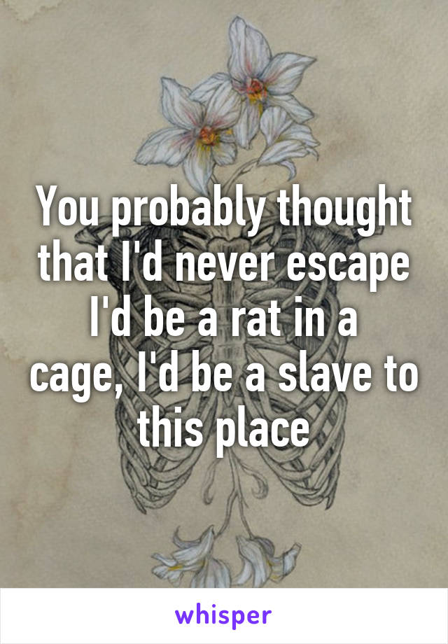 You probably thought that I'd never escape I'd be a rat in a cage, I'd be a slave to this place