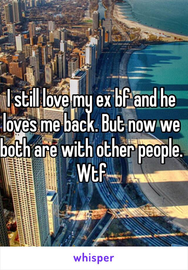 I still love my ex bf and he loves me back. But now we both are with other people. Wtf