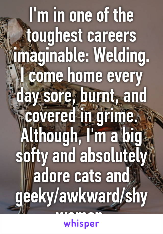 I'm in one of the toughest careers imaginable: Welding. I come home every day sore, burnt, and covered in grime. Although, I'm a big softy and absolutely adore cats and geeky/awkward/shy women.