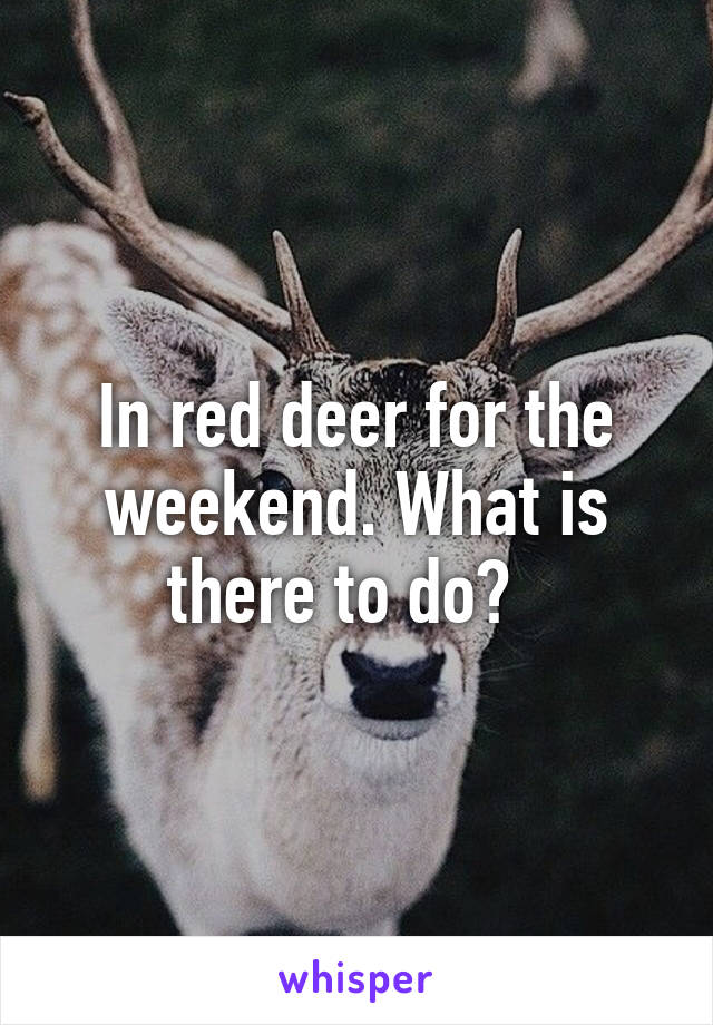 In red deer for the weekend. What is there to do?