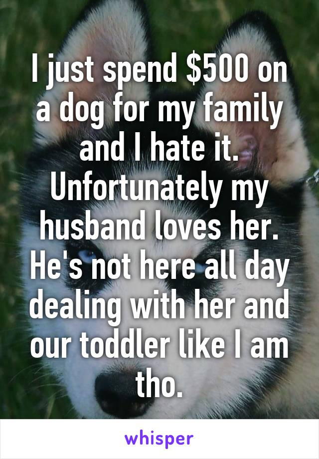 I just spend $500 on a dog for my family and I hate it. Unfortunately my husband loves her. He's not here all day dealing with her and our toddler like I am tho.