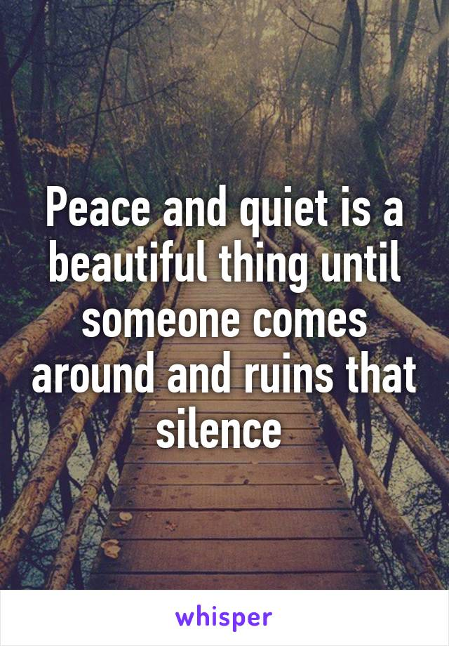 Peace and quiet is a beautiful thing until someone comes around and ruins that silence