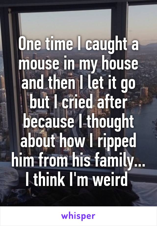 One time I caught a mouse in my house and then I let it go but I cried after because I thought about how I ripped him from his family... I think I'm weird