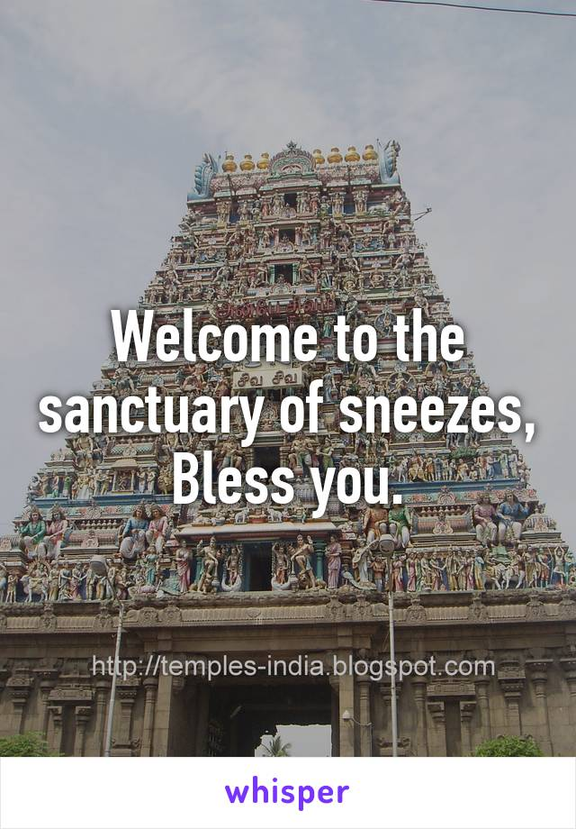 Welcome to the sanctuary of sneezes, Bless you.