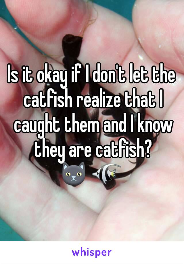Is it okay if I don't let the catfish realize that I caught them and I know they are catfish? 🐱 🐠