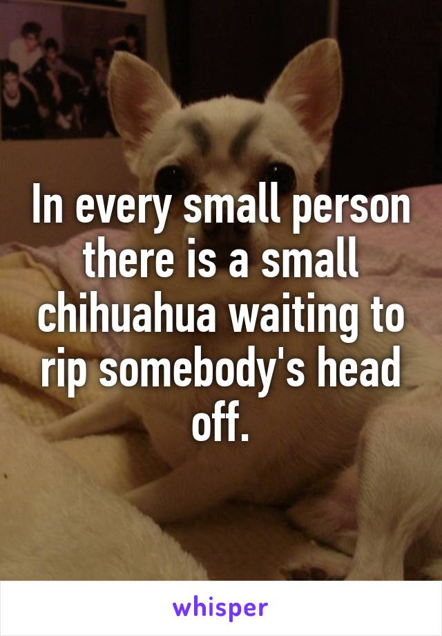 In every small person there is a small chihuahua waiting to rip somebody's head off.