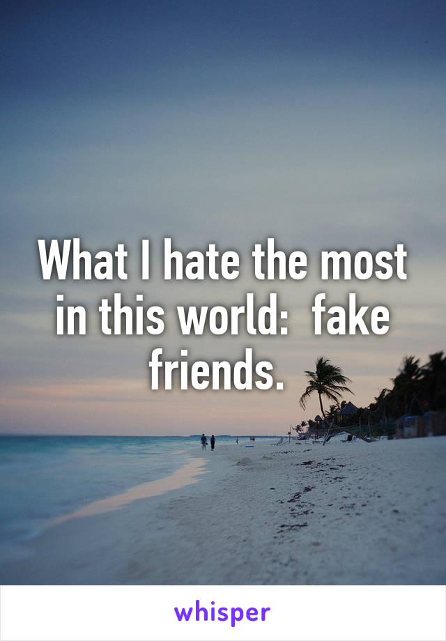 What I hate the most in this world:  fake friends.