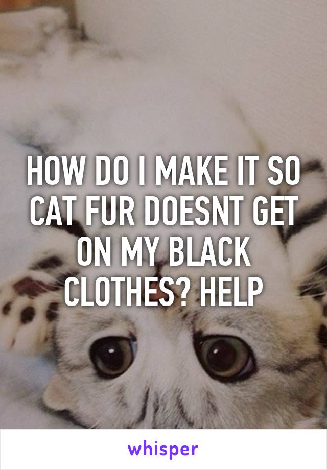 HOW DO I MAKE IT SO CAT FUR DOESNT GET ON MY BLACK CLOTHES? HELP