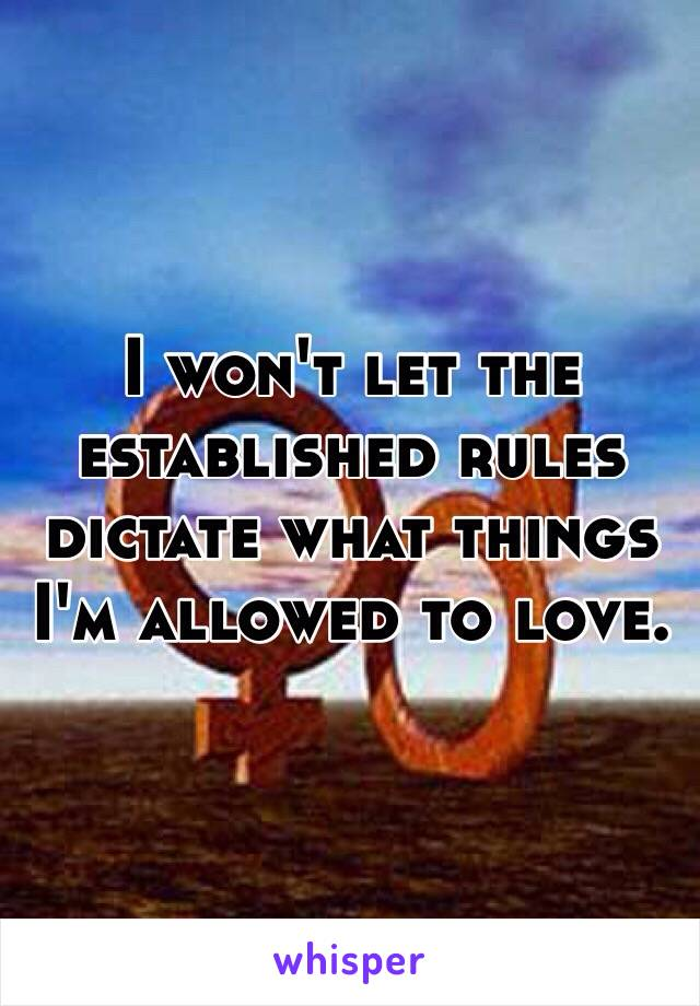 I won't let the established rules dictate what things I'm allowed to love.