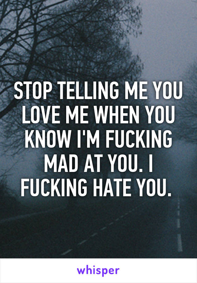 STOP TELLING ME YOU LOVE ME WHEN YOU KNOW I'M FUCKING MAD AT YOU. I FUCKING HATE YOU.