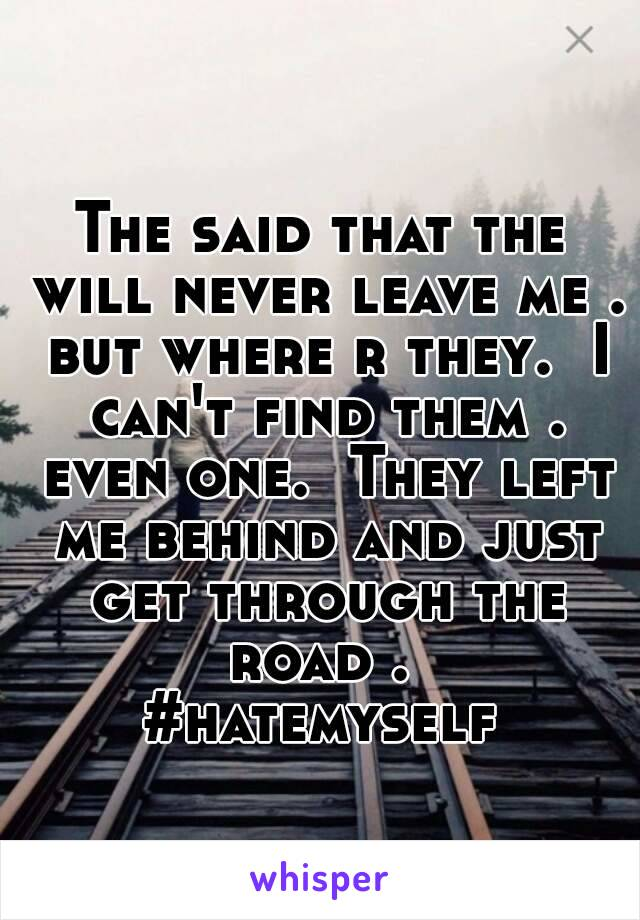 The said that the will never leave me . but where r they.  I can't find them . even one.  They left me behind and just get through the road .  #hatemyself
