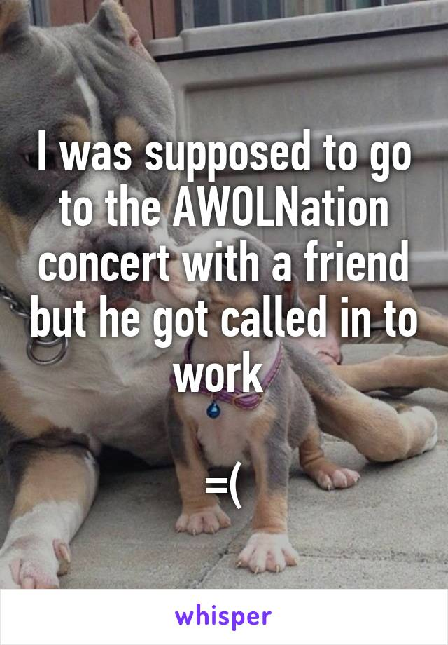 I was supposed to go to the AWOLNation concert with a friend but he got called in to work   =(