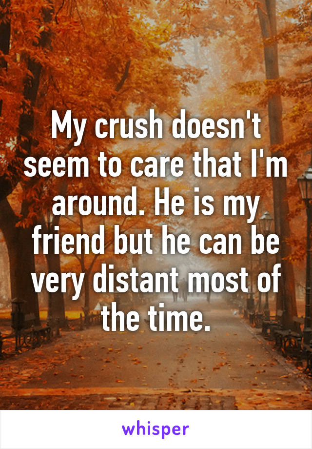 My crush doesn't seem to care that I'm around. He is my friend but he can be very distant most of the time.