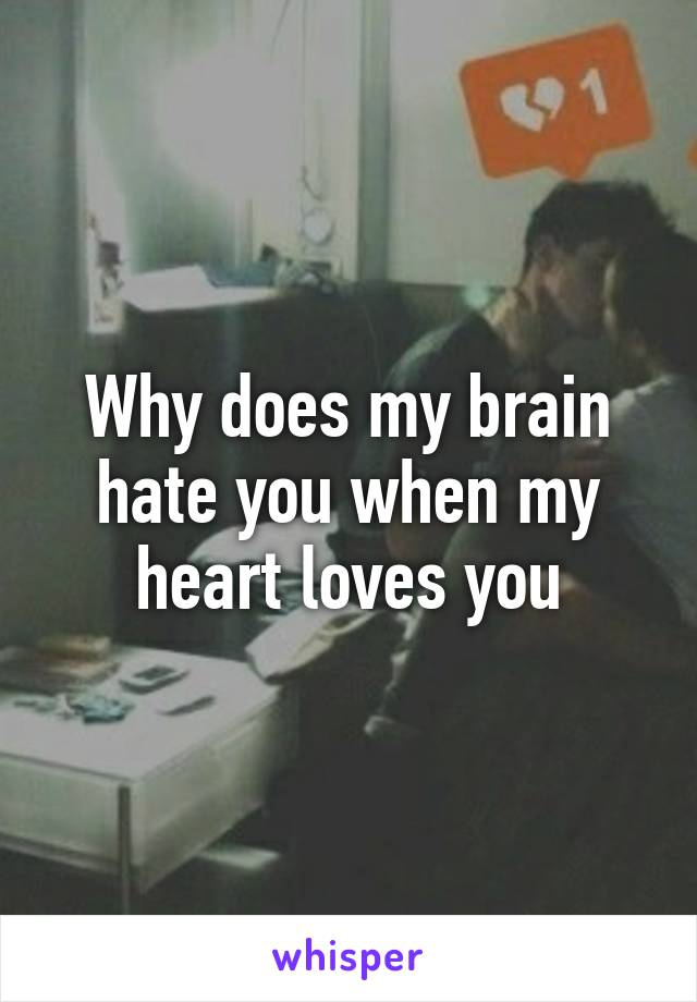 Why does my brain hate you when my heart loves you