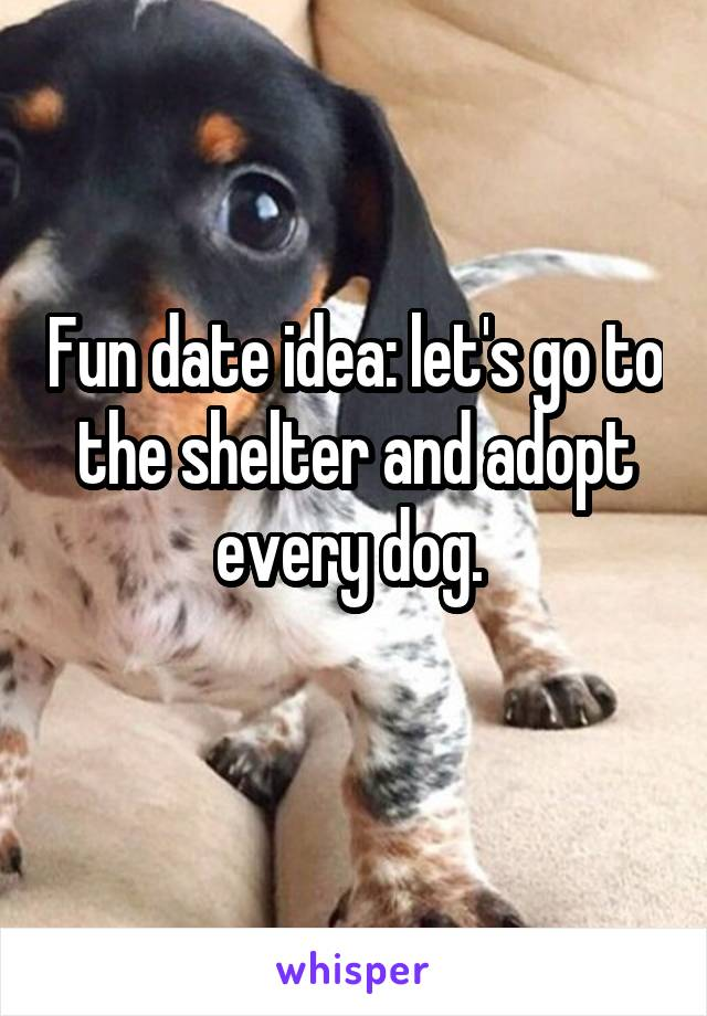 Fun date idea: let's go to the shelter and adopt every dog.