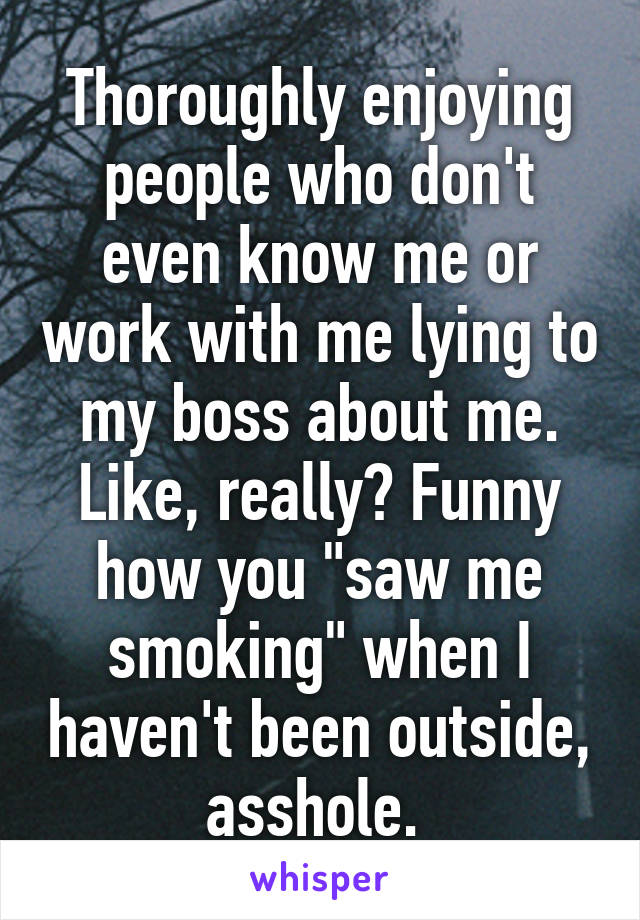 "Thoroughly enjoying people who don't even know me or work with me lying to my boss about me. Like, really? Funny how you ""saw me smoking"" when I haven't been outside, asshole."