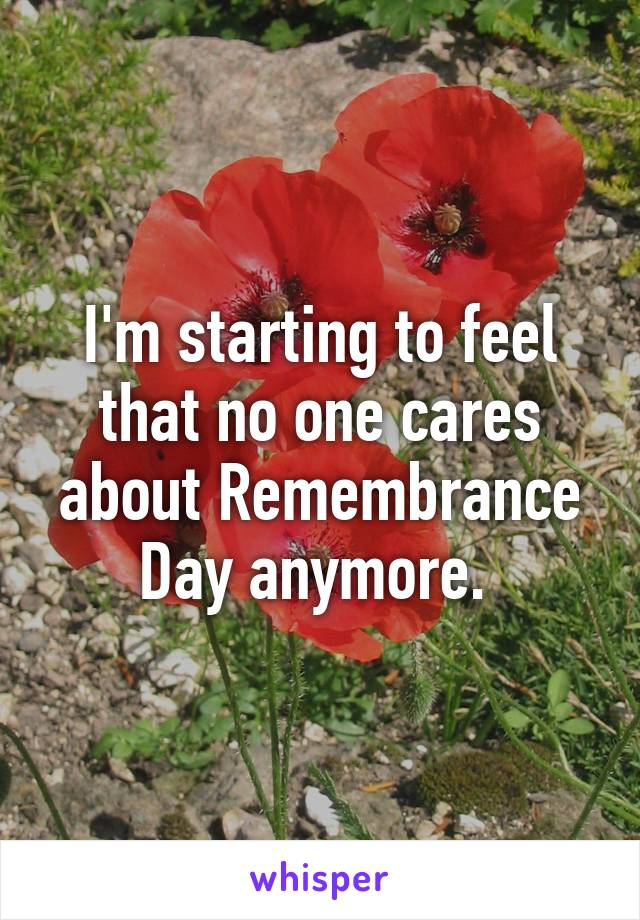 I'm starting to feel that no one cares about Remembrance Day anymore.