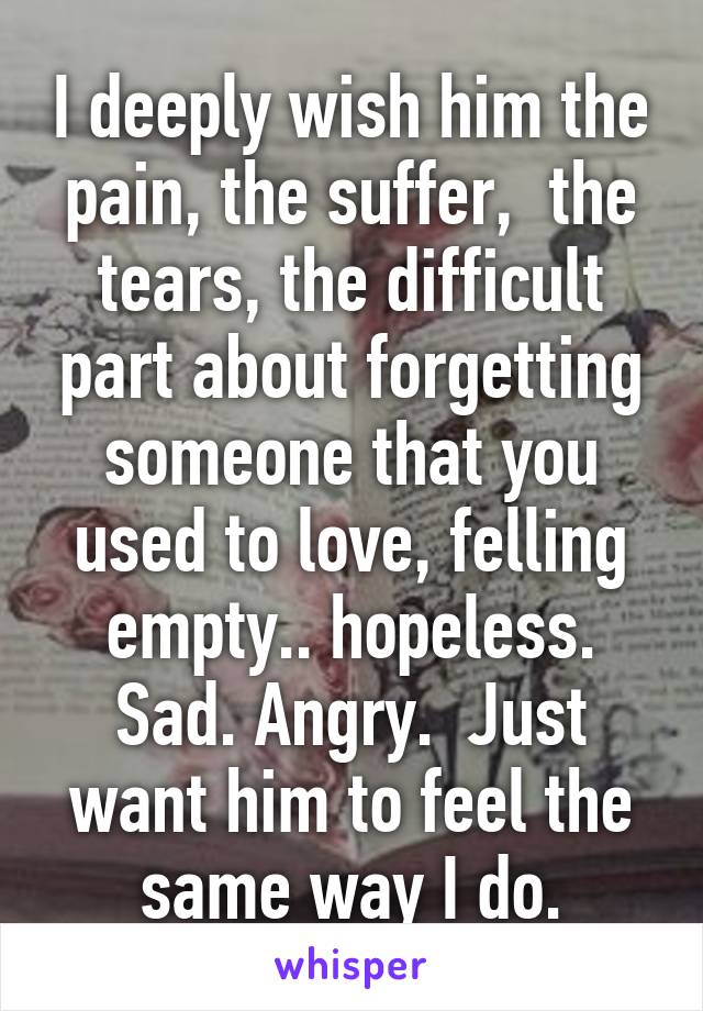 I deeply wish him the pain, the suffer,  the tears, the difficult part about forgetting someone that you used to love, felling empty.. hopeless. Sad. Angry.  Just want him to feel the same way I do.