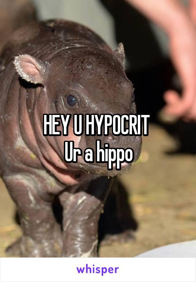 HEY U HYPOCRIT  Ur a hippo