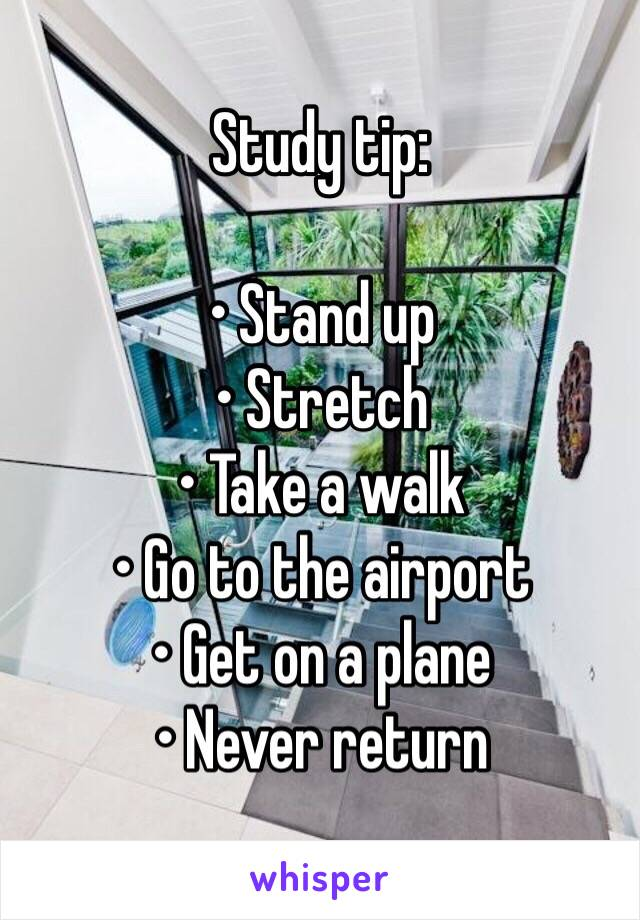 Study tip:         • Stand up • Stretch • Take a walk • Go to the airport • Get on a plane • Never return