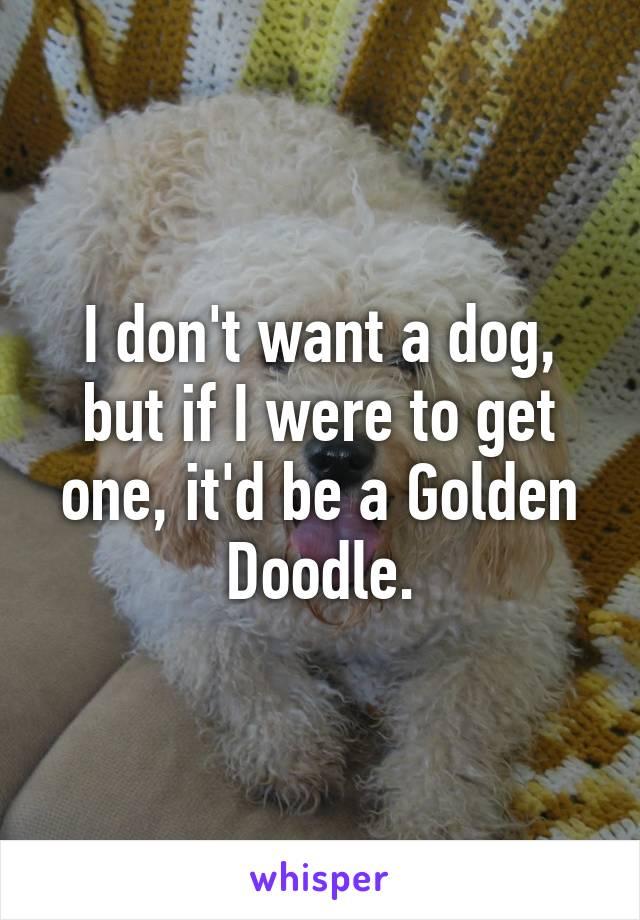 I don't want a dog, but if I were to get one, it'd be a Golden Doodle.