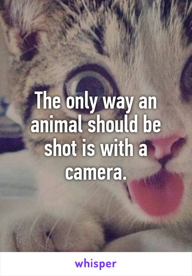 The only way an animal should be shot is with a camera.