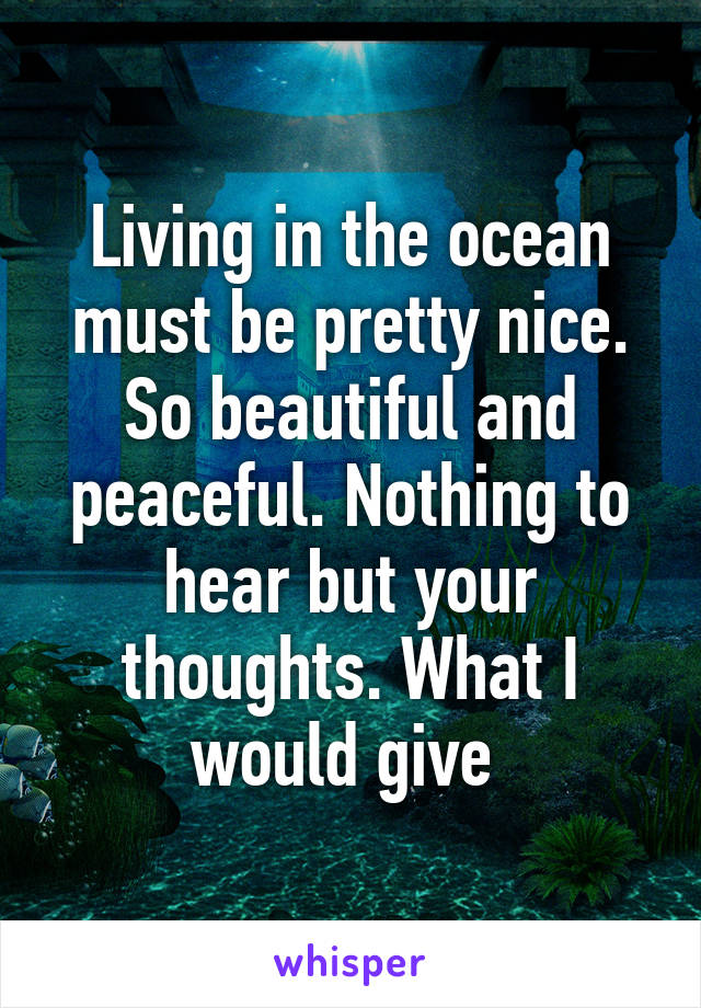 Living in the ocean must be pretty nice. So beautiful and peaceful. Nothing to hear but your thoughts. What I would give