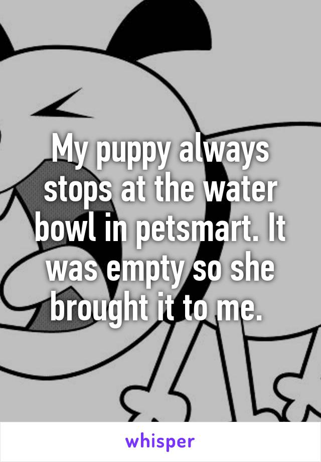 My puppy always stops at the water bowl in petsmart. It was empty so she brought it to me.