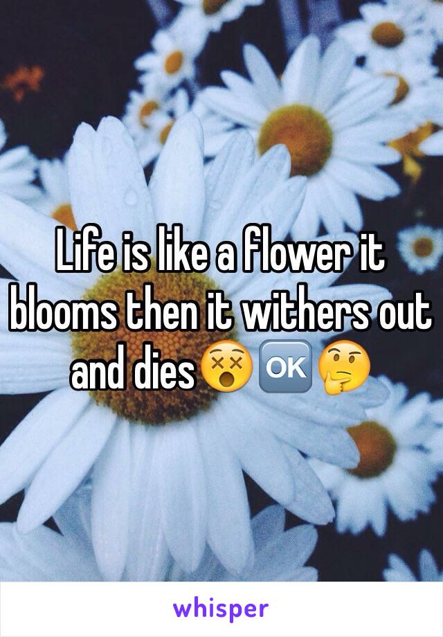 Life is like a flower it blooms then it withers out and dies😵🆗🤔