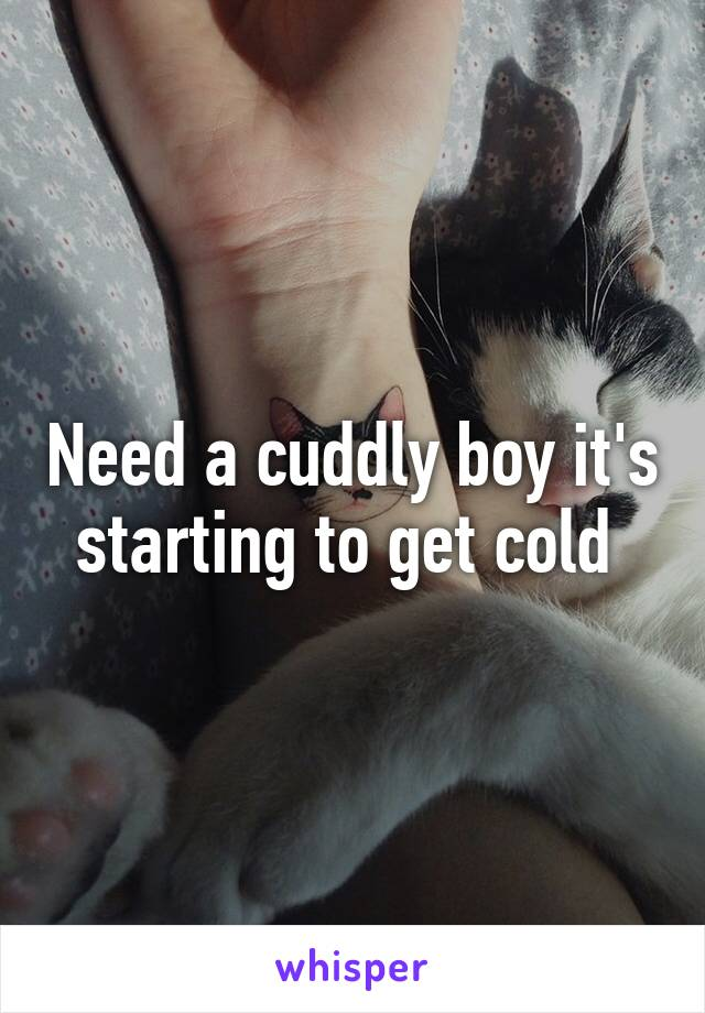 Need a cuddly boy it's starting to get cold