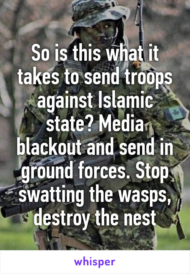 So is this what it takes to send troops against Islamic state? Media blackout and send in ground forces. Stop swatting the wasps, destroy the nest