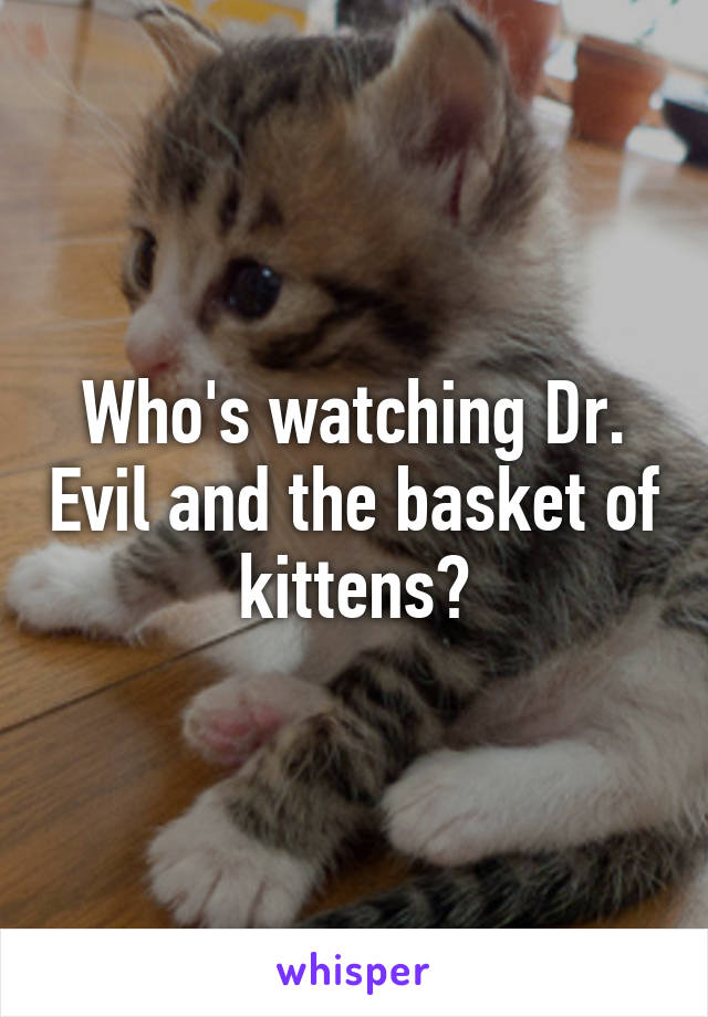 Who's watching Dr. Evil and the basket of kittens?