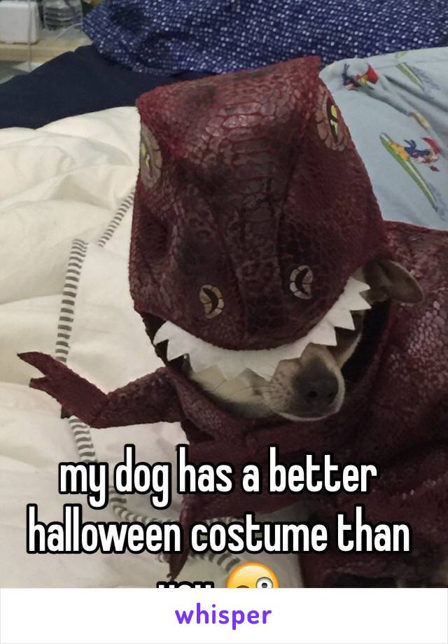 my dog has a better halloween costume than you 😜